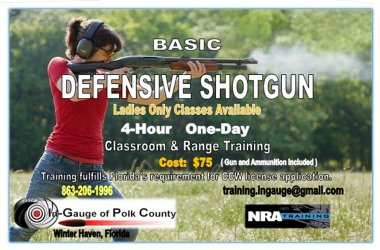 Basic_Defensive_Shotgun 2.0.